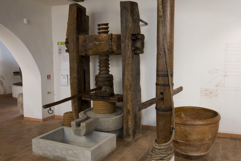 Torgiano, Museo dell'Olivo e dell'Olio (MOO)