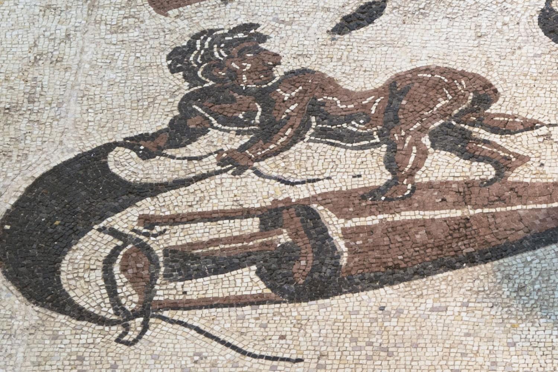 Cannara, Museo della città e del territorio