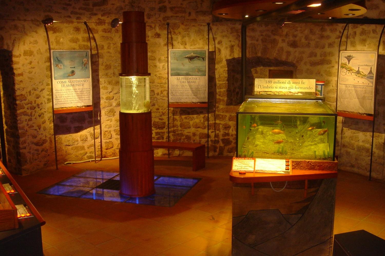 """Polino, Museo - laboratorio dell'Appennino Umbro """"Sotto - Sopra"""""""