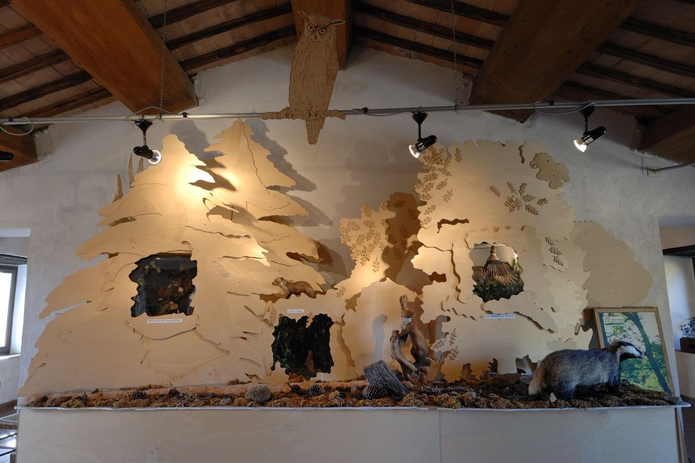 San Venanzo, Centro di documentazione flora e fauna del Monte Peglia